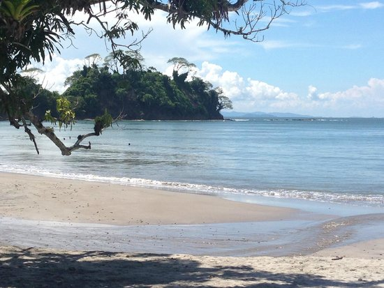 Playa Mantas.jpg