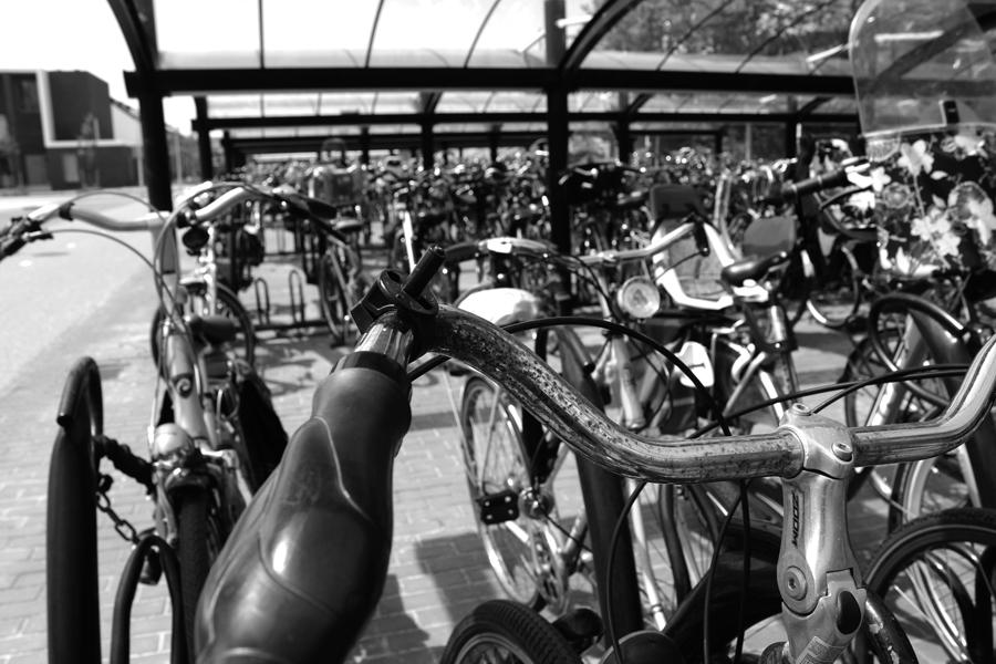 amsterdam_bikes2.jpg
