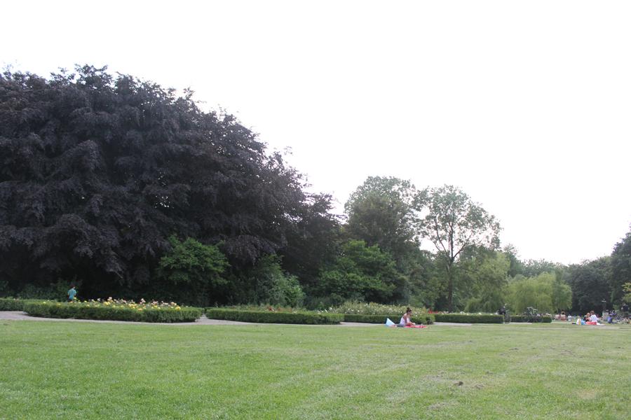 amsterdam_vondelpark.jpg
