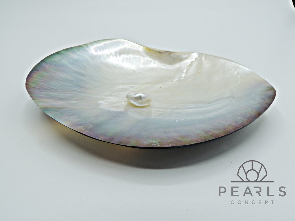 Fotografía de Pearls Concept