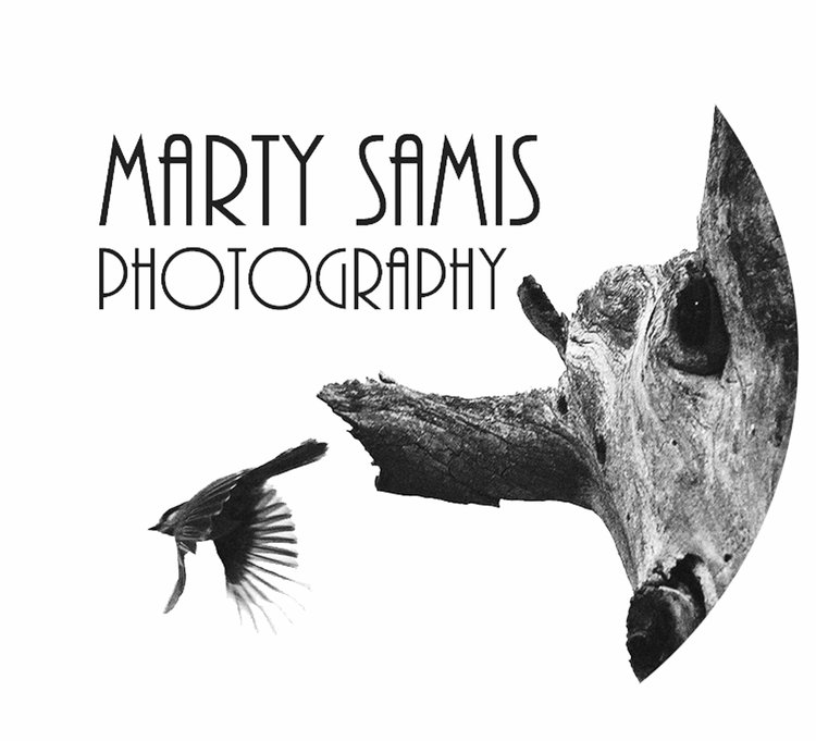 Marty Samis Photography