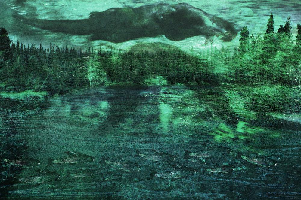 River_Dreams.jpg