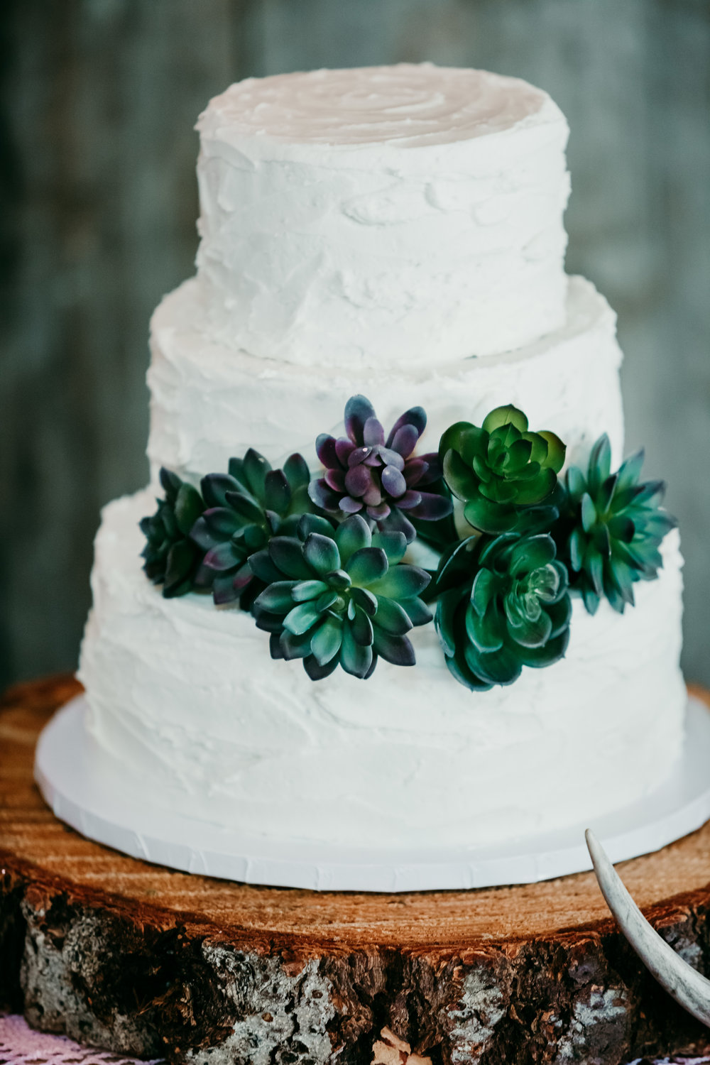 corvallis-oregon-wedding-photographer_Star-Attractions-Hummer-Cake.jpg
