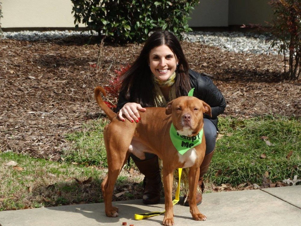 Samantha Beadle - Samantha has been a volunteer at the Fayette County Animal Shelter since 2015.  She is a founding board member and serves as Treasurer of FFCAS.  Samantha and her family reside in Peachtree City with their two rescue dogs, Chance and Lucky.