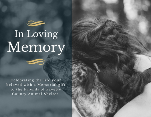 Make a Gift in Memory - Remember a person or animal who has touched your life by making a memorial gift. We'll provide you with a special e-card to notify a loved one of your generous contribution!