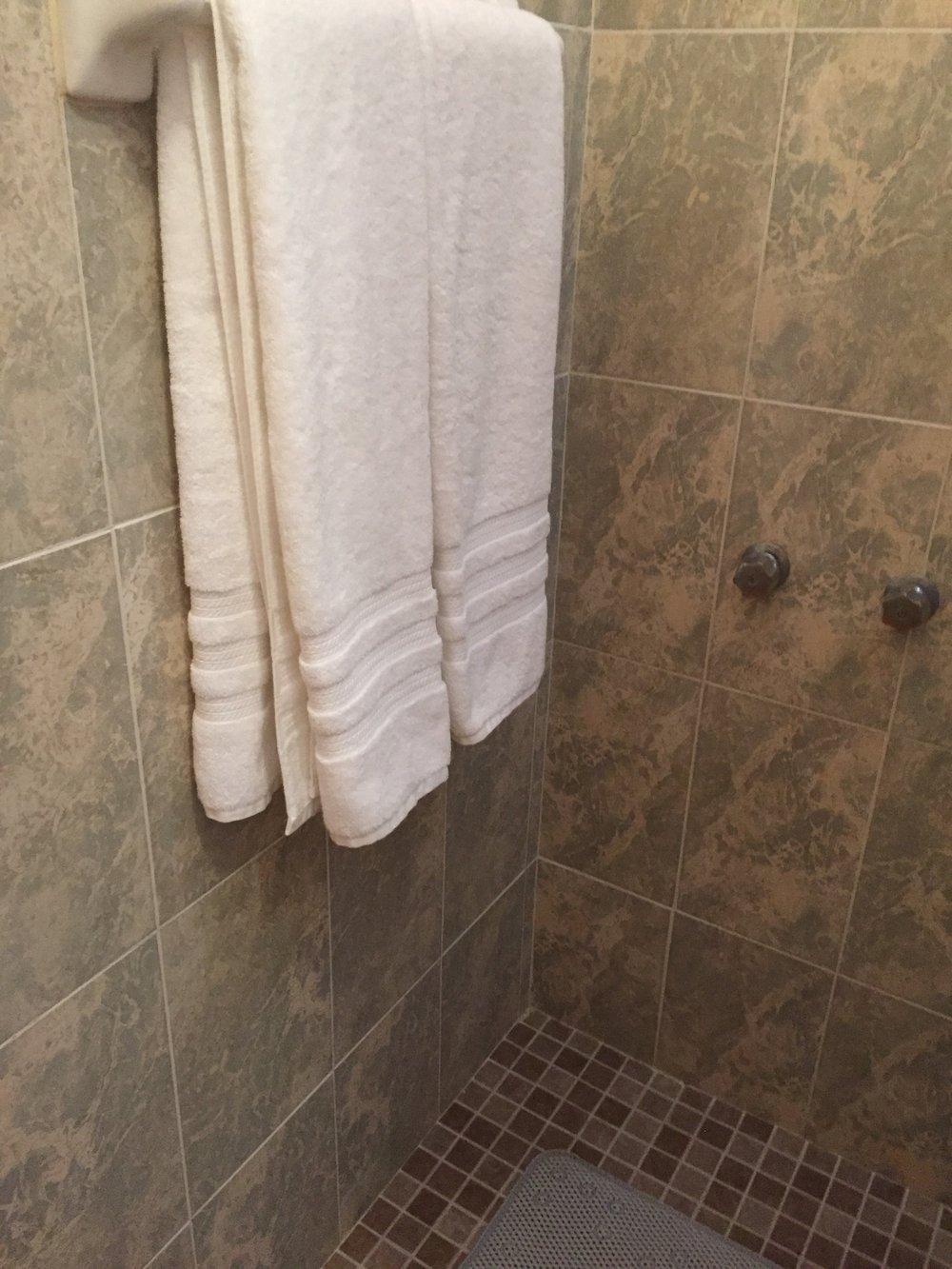 3 shower2.jpg.JPG