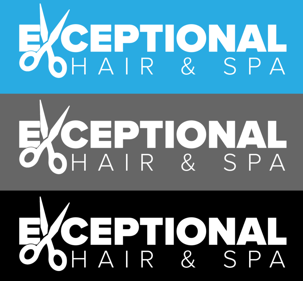 Exceptional Hair & Spa - Logo Concepts