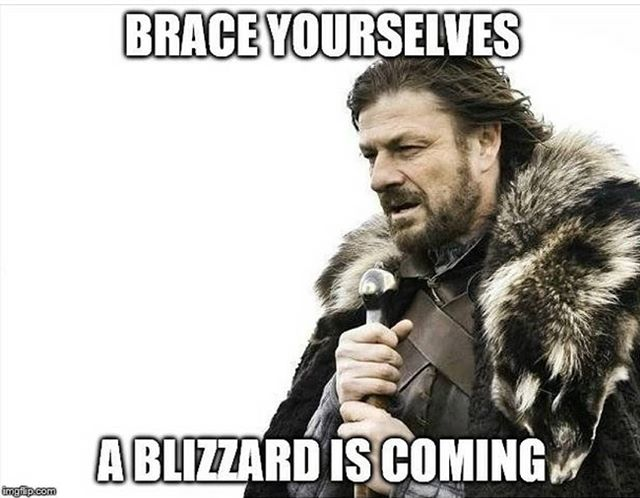 Stay safe out there! . . . . #blizzard #snow #snowday #michiganweather #gameofthrones #got