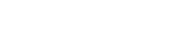 Ardenci | Social and Business Developments | Start-Up Launcher