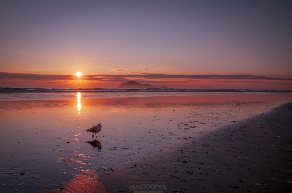 Waimarama Sunrise
