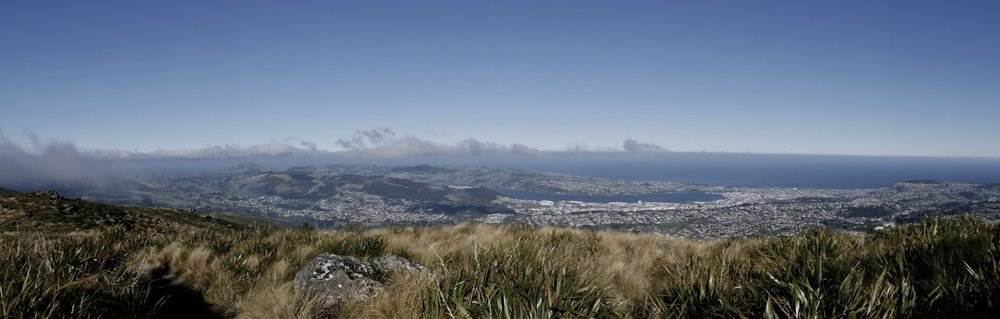 Transforming Otago Living Environments