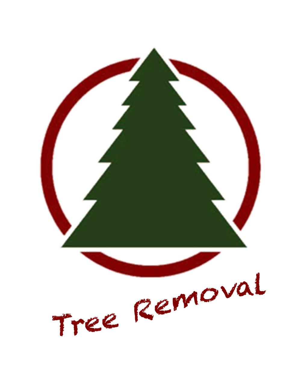 Tree Removal & Recycling -