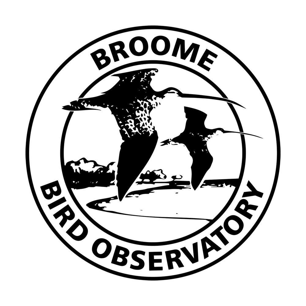 Broome bird observatory   We're super excited to be running our first tour with these guys in 2018!  owned by birdlife australia, this place is all about conservation, education, and amazing birds!