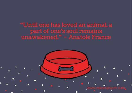 Red Dog Bowl Pet Sympathy Card.png