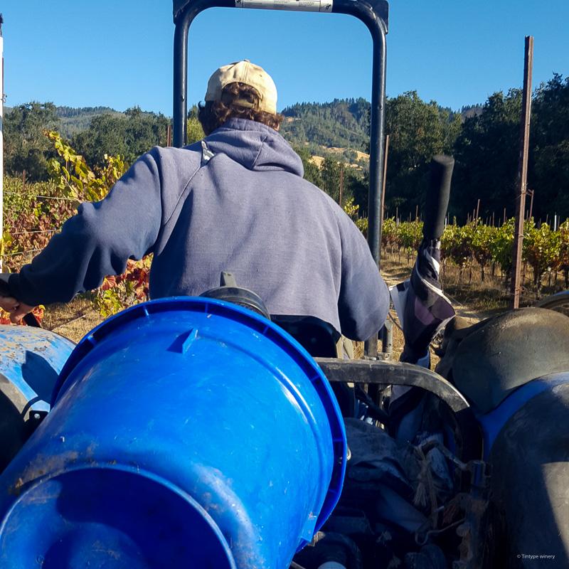 vecino vineyard tractor harvestjpg
