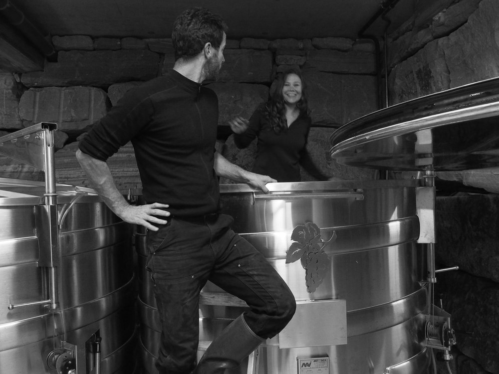 Binner wine cave Alsace tank france.jpg