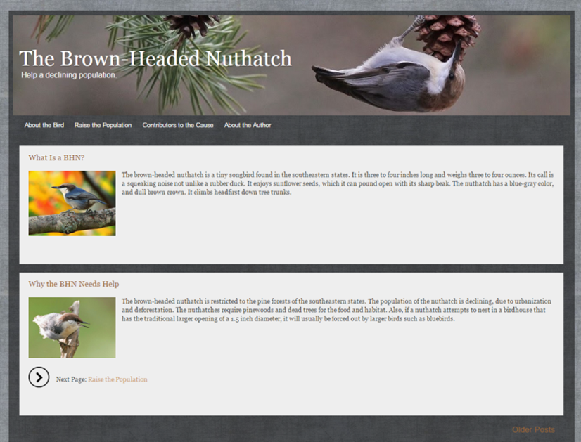 nuthatch.info.png