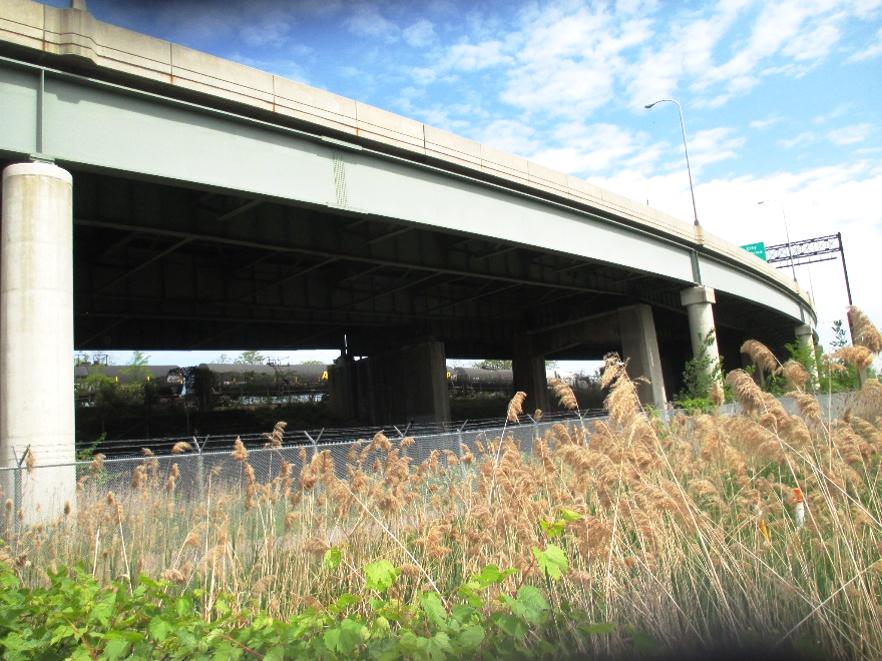 Bridge2_Home.png