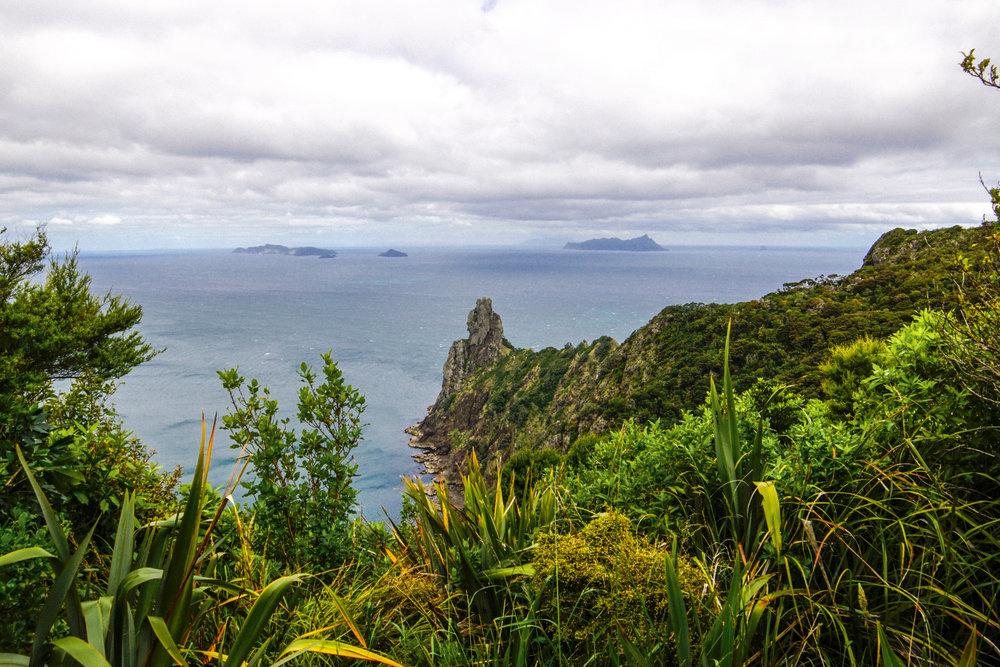 Whangarei Head