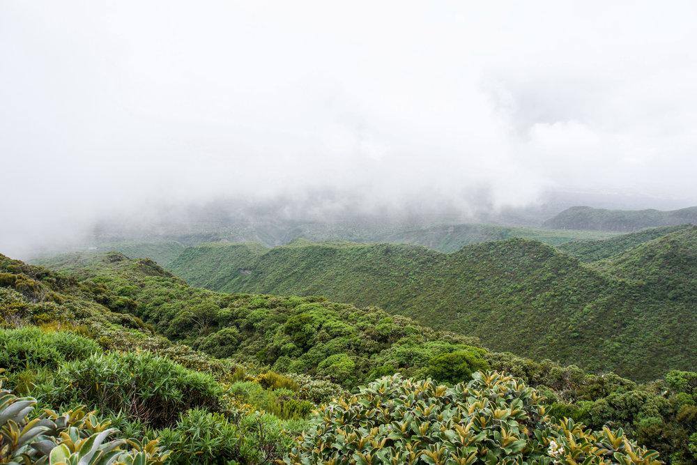 Taranaki - egmont national park