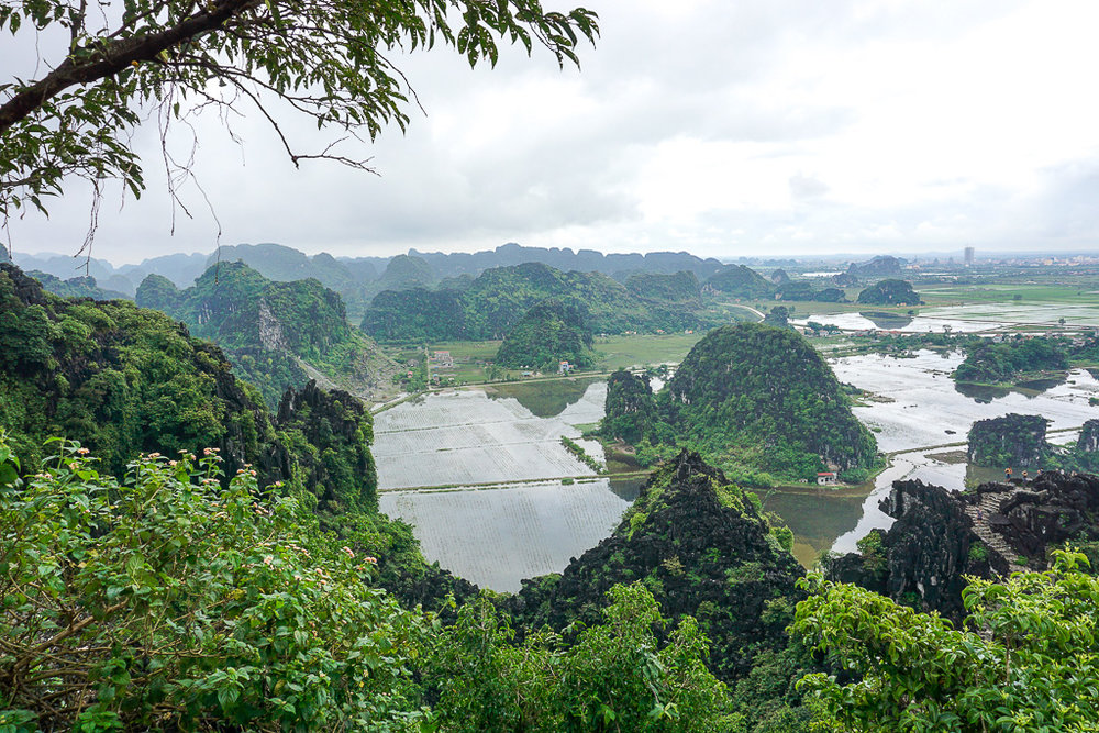 Tam Coc and the Ninh Binh province are covered in karst limestone cliffs and rice fields.
