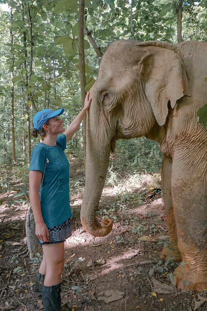 Connecting with the elephants - MandaLao Sanctuary