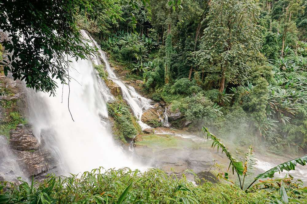 Tour in the Jungle in Chiang Mai