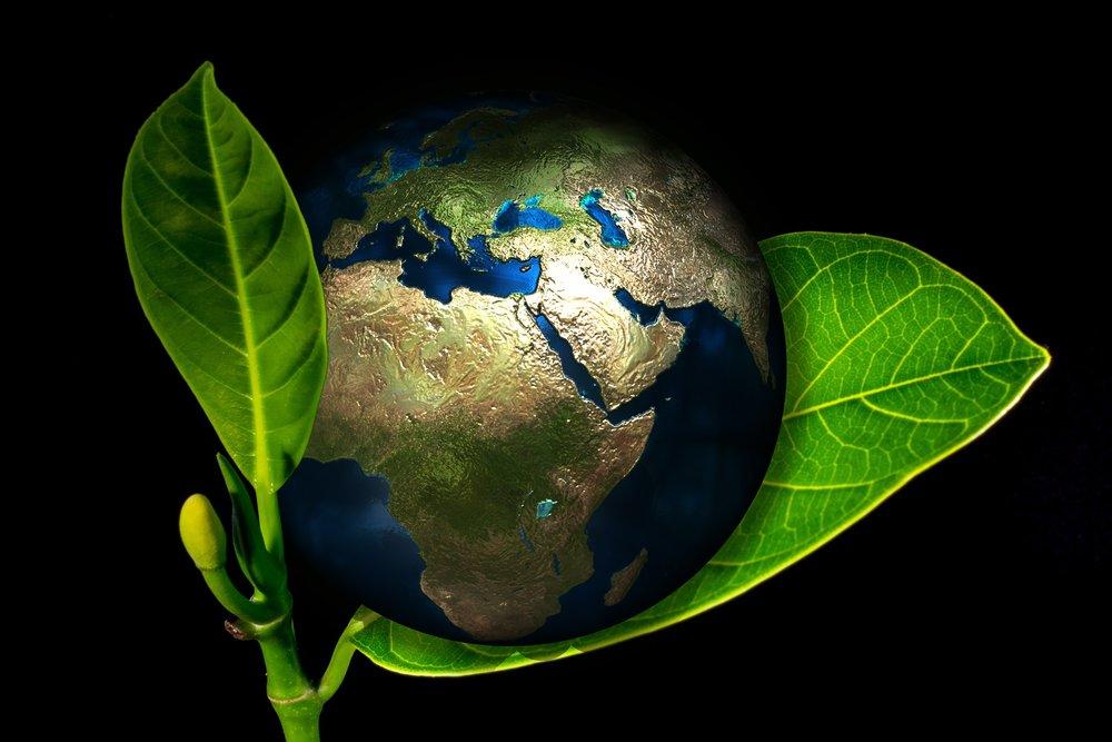 earth-405096_1920.jpg