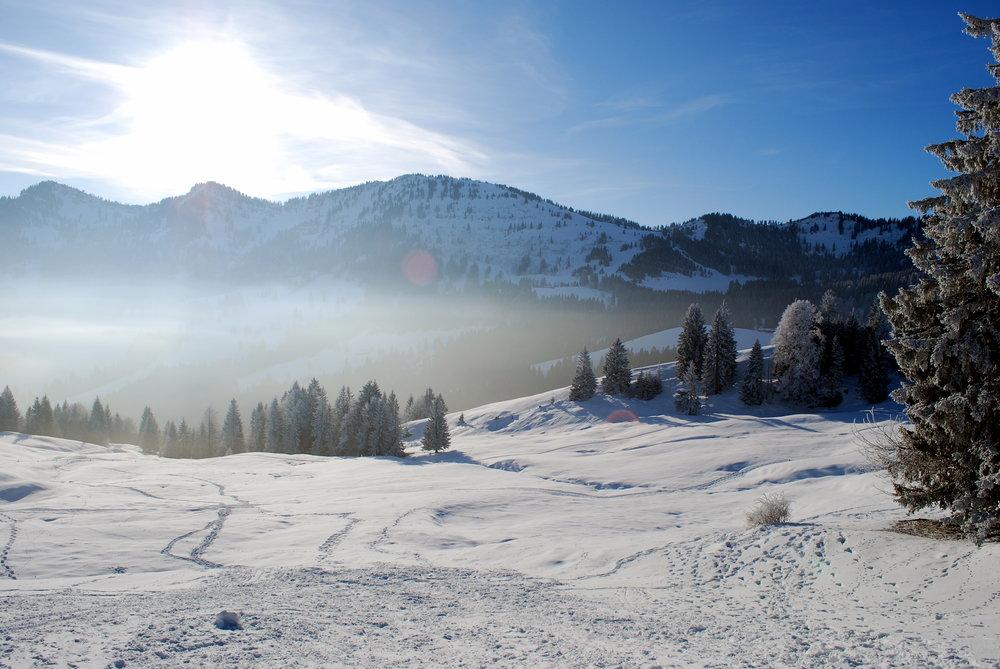 Winter Schneelandschaft 2.jpg