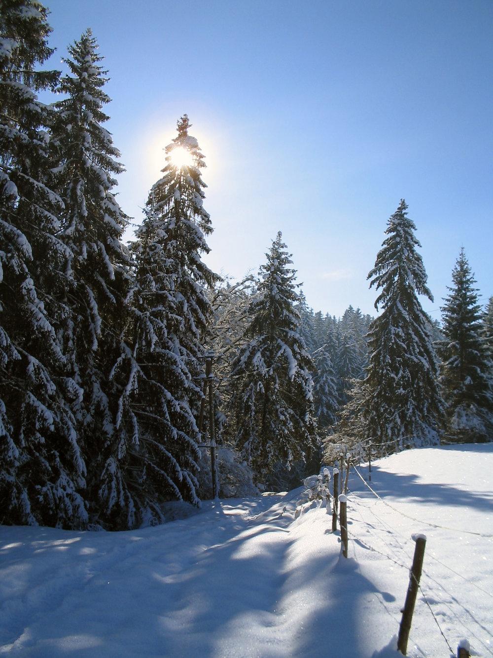 Winter Schneelandschaft 1.jpg