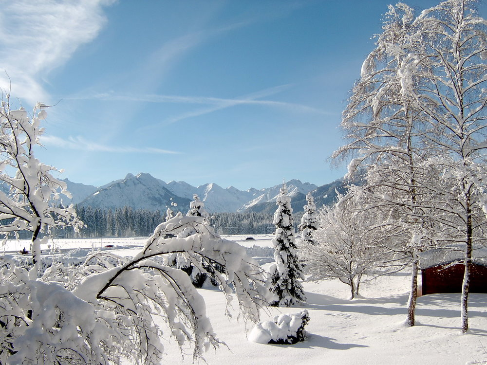 Winter Schneelandschaft.jpg