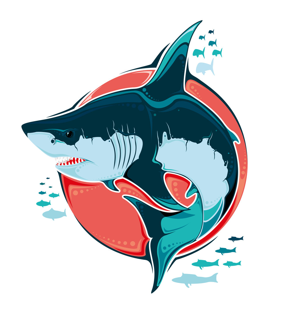 Shark-Only-2-01.jpg