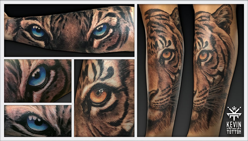 Black and grey tiger designs on forearm and calf with coloured eyes. Who doesn't love the big cats!