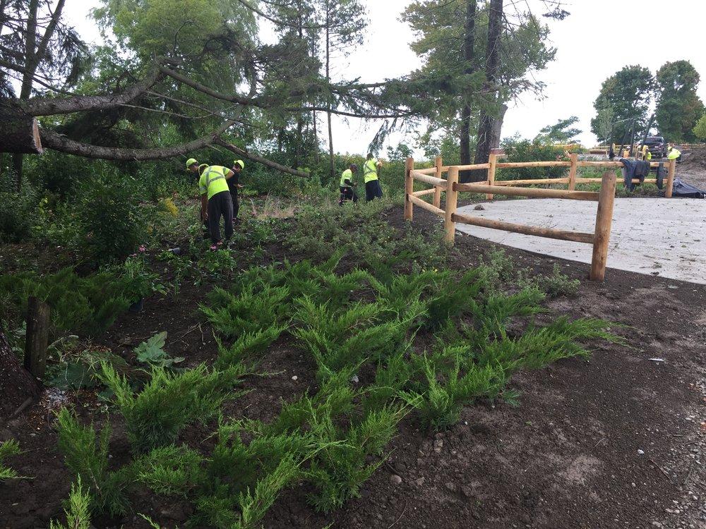 Pickering - Photo 2 - Restoration team planting native trees.JPG