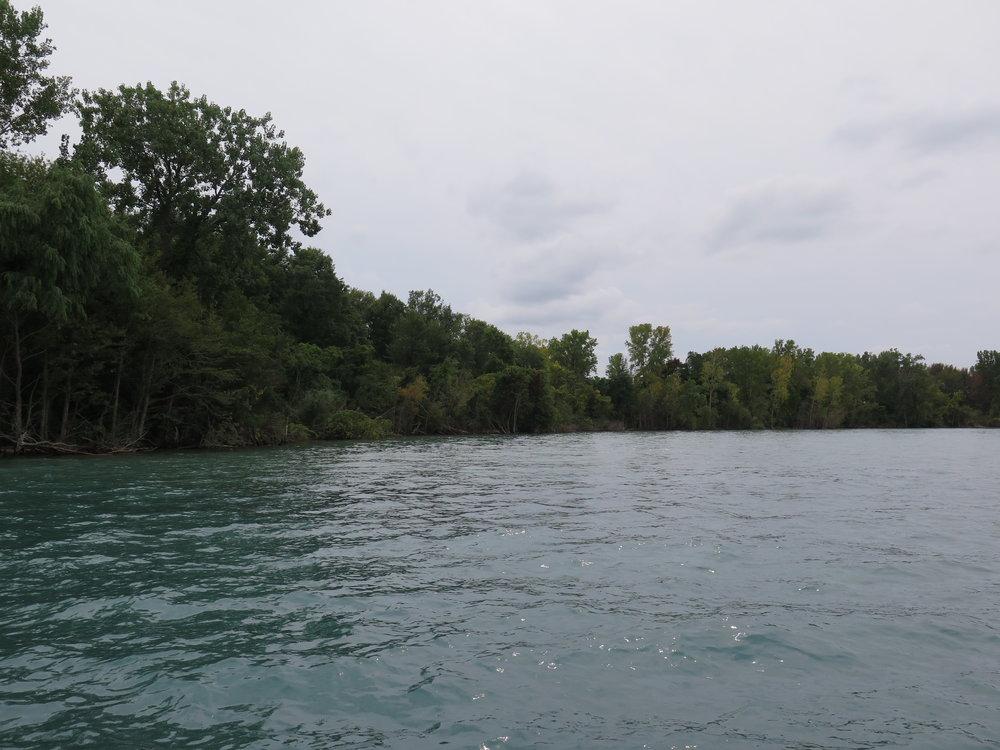 The Weston Family Swim Drink Fish Great Lakes Challenge - Windsor 3.JPG
