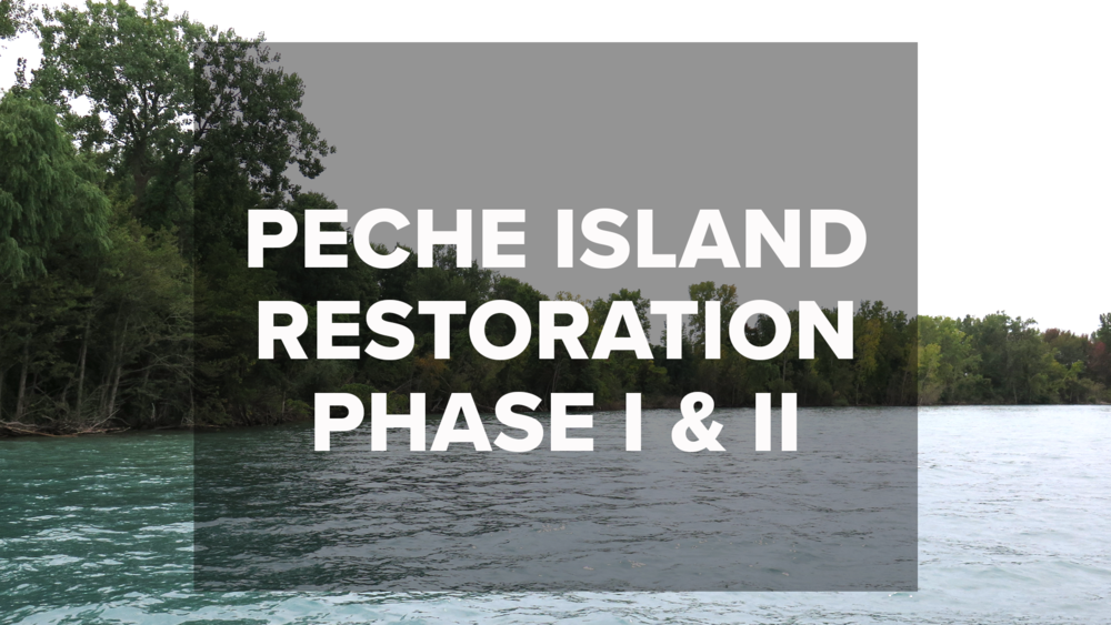 The Weston Family Swim Drink Fish Great Lakes Challenge - Peche Island Restoration - Detroit RIver, Windsor Ontatrio.png