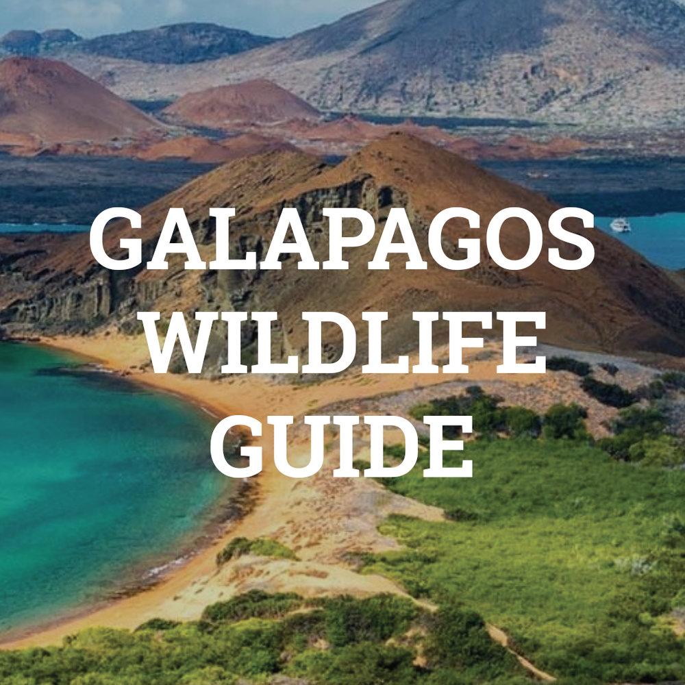 GalapagosThumbnail.jpg
