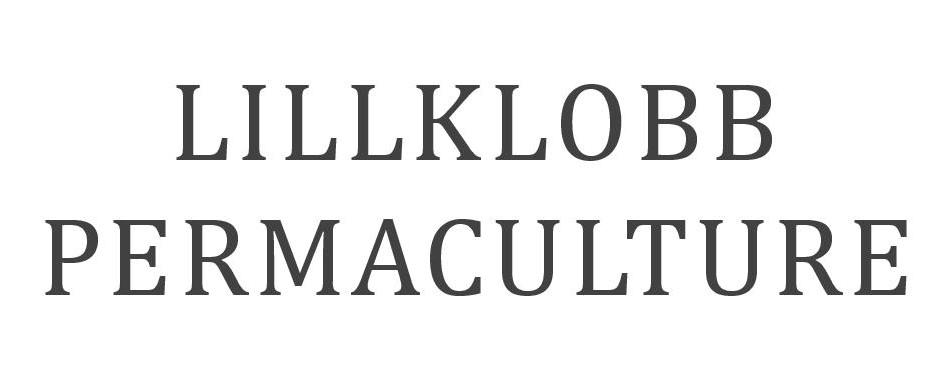 lillklob-page-001 (2).jpg