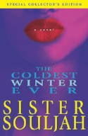 The Coldest Winter Ever - Sista Souljah.jpg
