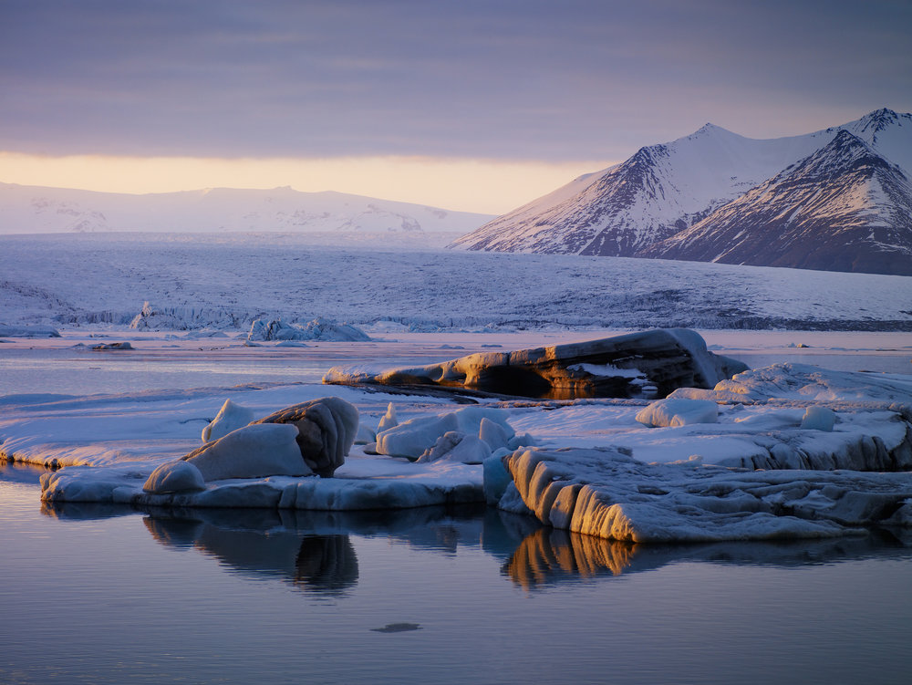 Iceland sits just below the Arctic Circle with the exception of one small island 40 kilometres off shore. Grímsey, a home to less than 100 people, is a bird watcher's paradise with hundreds of thousands of birds. - The Arctic Circle