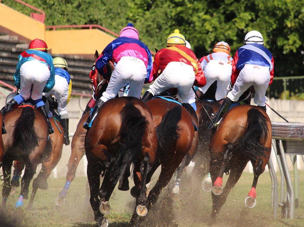 16 Mauritius horseracing.jpg