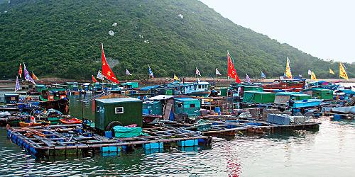 8 Lamma fishin village a.jpg