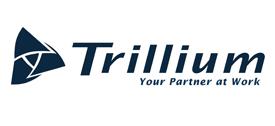 Bronze Sponsor - Trillium Staffing