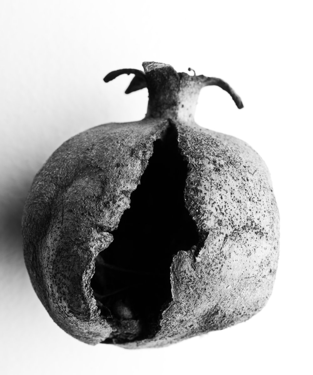 Pomegranate, cracked, 2016