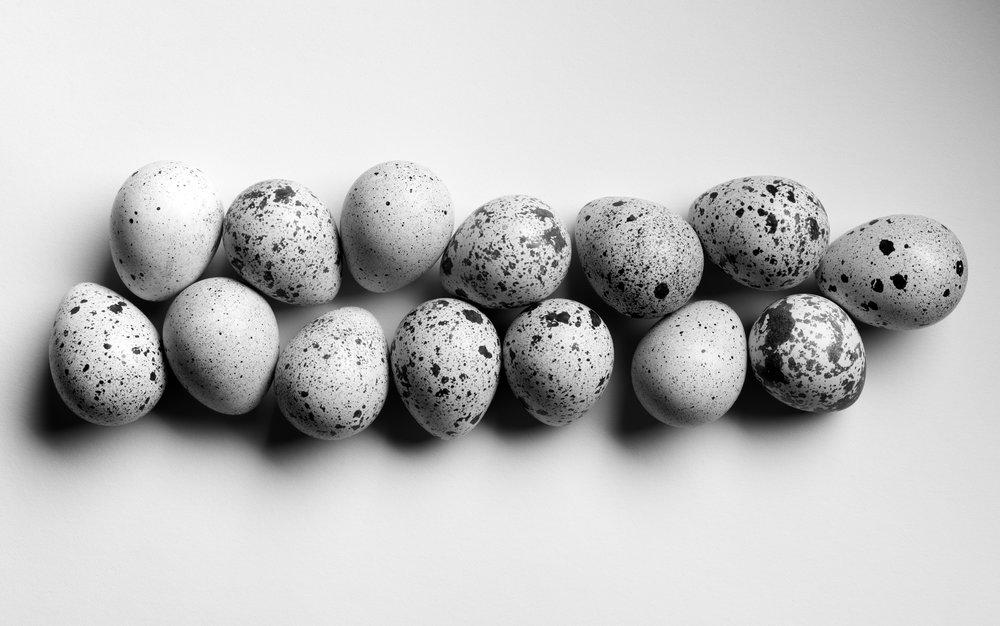 Quail eggs, 2016