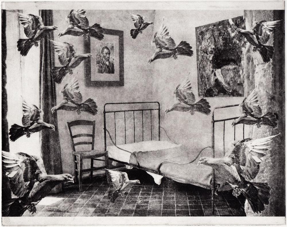 Bedroom Pigeons