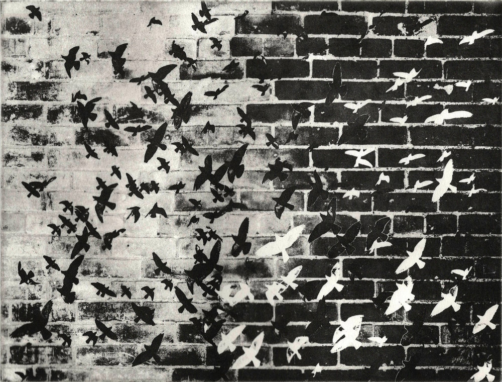 Wall pigeons