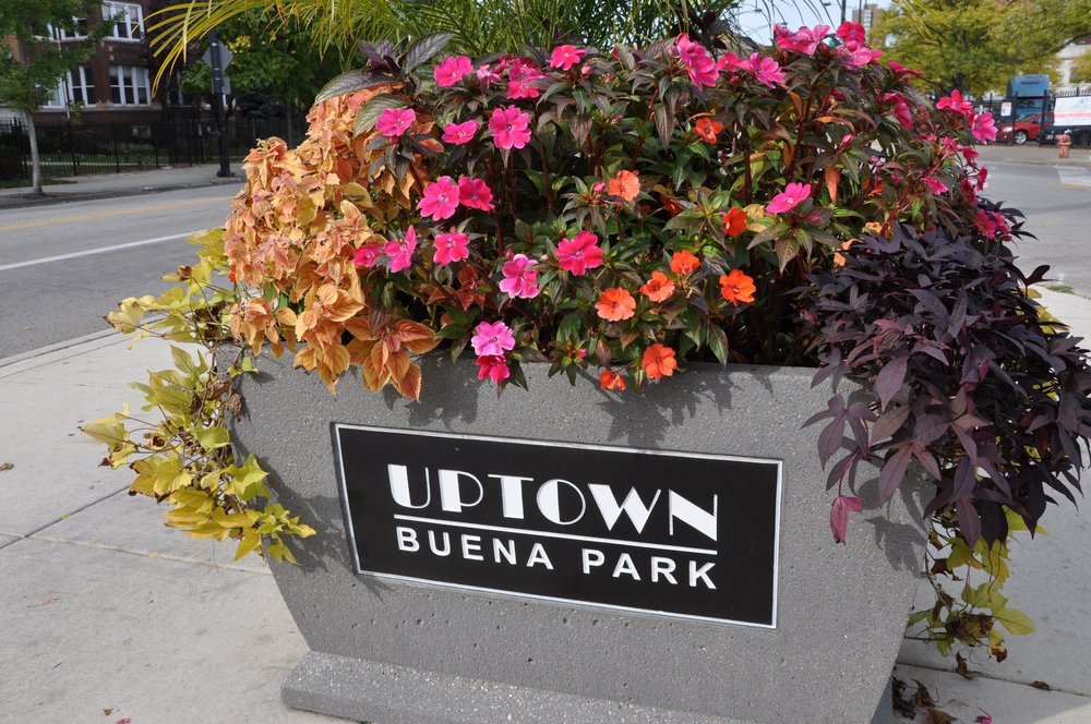 The  Buena Park Neighbors  neighborhood association plays an active role in the neighborhood, hosting outdoor concerts and organizing activities such as the annual volunteer cleanup.