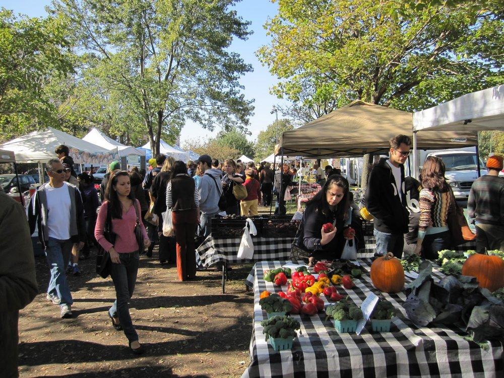 Logan-Square-farmers-market-NoShameAdventures.jpg
