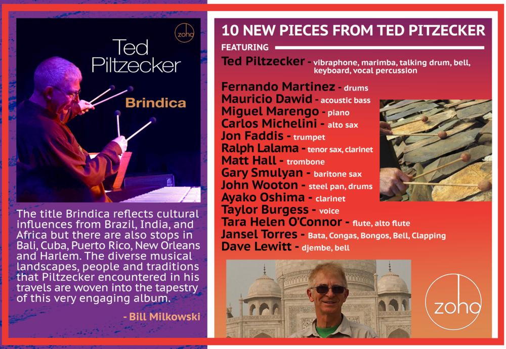Banner_Ted Piltzecker_Brindica.png